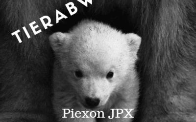 Pfefferspraypistole JPX